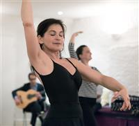 Flamenco online course