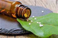 Alison Roberts homeopath